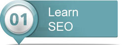 Section 1: Learn SEO