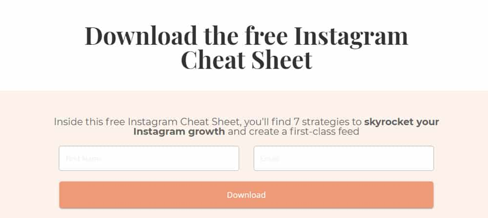 Lead Magnet Cheat Sheet Example
