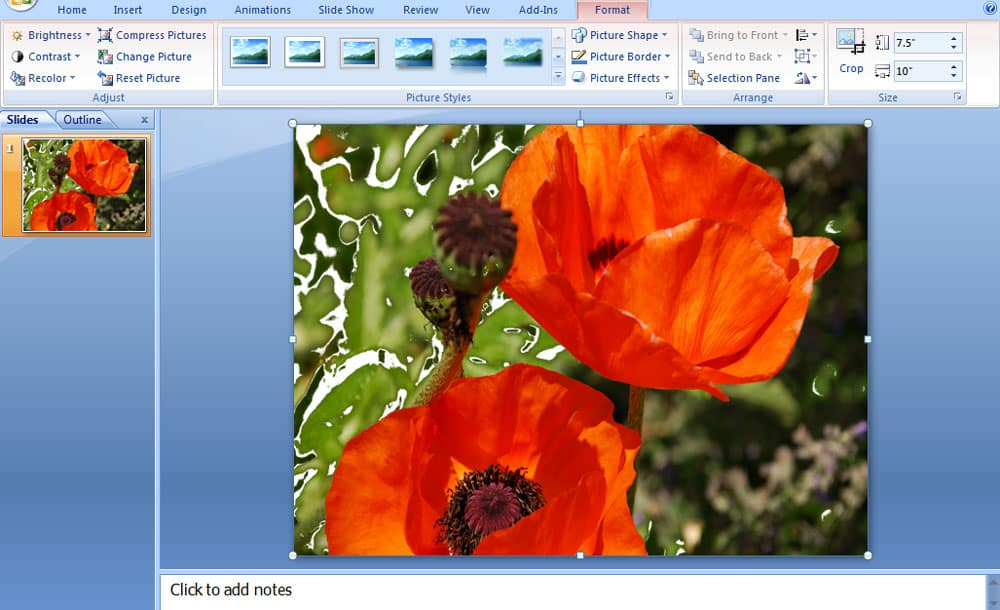 Screenshot for PowerPoint 2007 transparency to image.