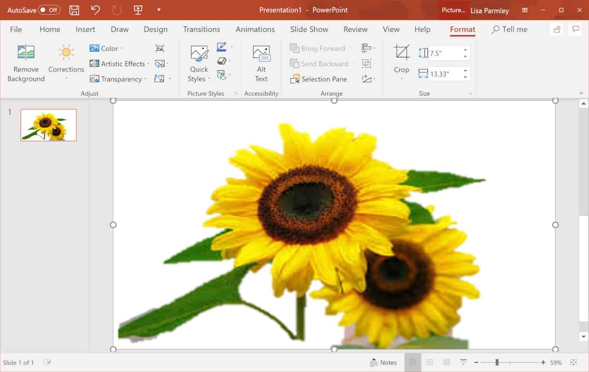 Screenshot of background removal in PowerPoint.