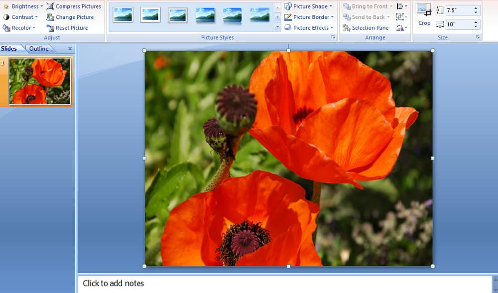 Screenshot for removing background with PowerPoint 2007.