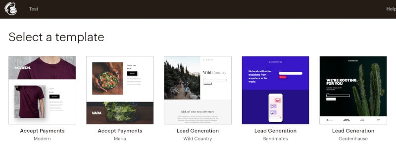 Screenshot for Mailchimp landing page choices.