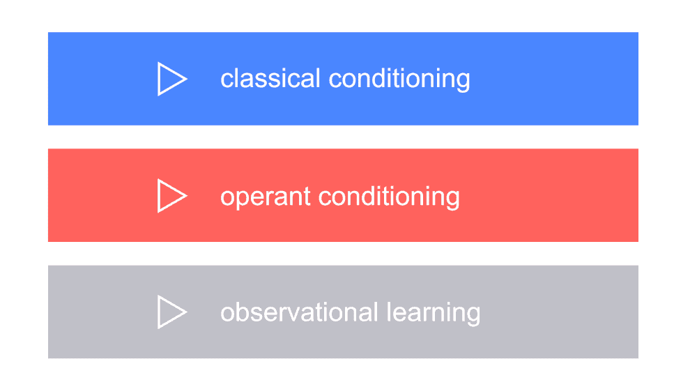 graphic showing 3 types of cognitive learning
