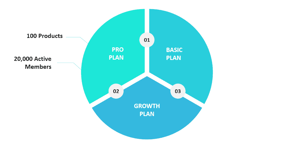 Chart showing Kajabi's Pro plan along with a couple of its main features.