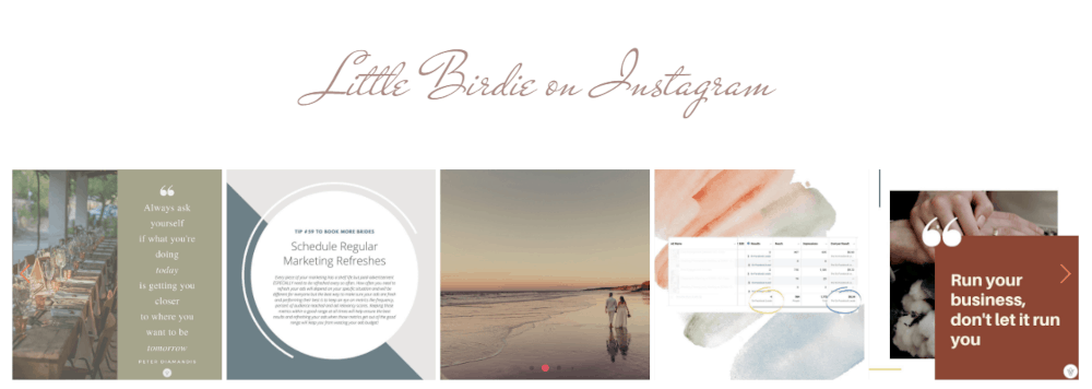 Brittany Cole's site